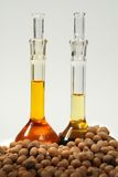 Ethanol produce by soy seeds Stock Photos