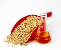 Ethanol still life. Beaker of ethanol sits aside a red scoop filled with corn kernals-shot on white with soft shadows and space for copy Stock Photography