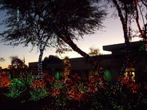 Ethel M Chocolate Factory Cactus Garden Decorated for Christmas Royalty Free Stock Photo