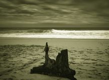 Ethel Wreck Bay con los restos grandes en la playa, hombre que pasa cerca fotos de archivo