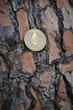 Ethereum dourado no fundo de madeira Imagem de Stock Royalty Free