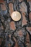 Ethereum dourado no fundo de madeira Imagens de Stock Royalty Free