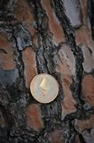 Ethereum dourado no fundo de madeira Fotos de Stock Royalty Free