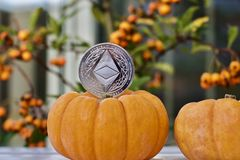 Ethereum pumpkin concept royalty free stock photography