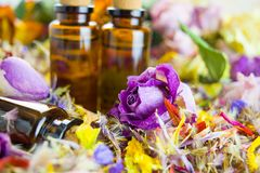 Etherische oliën, aromatherapy, droge bloemen stock foto's