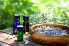 Etherische oliën met droge kruiden Stock Foto