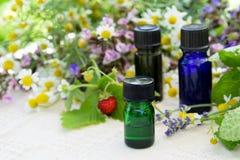 Etherische oliën met kruidenbloemen Royalty-vrije Stock Foto's