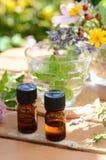 Etherische oliën met kruidendrank en bloemen Stock Afbeelding