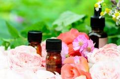 Etherische oliën met rozen en kruiden Royalty-vrije Stock Foto's