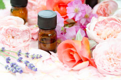 Etherische oliën met rozen en lavendel Stock Foto's