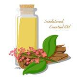 Etherische olie van sandelhout Stock Foto