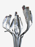 Ethernet-abstrakter Blumenstrauß Lizenzfreie Stockfotos