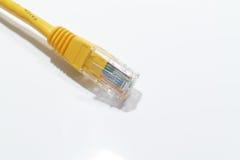 Ethernet łaty kabel Zdjęcia Stock