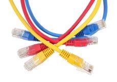 Ethernet Cabl de réseau Images libres de droits