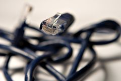 Ethernet cable (3). Ethernet cable coiled Royalty Free Stock Photos