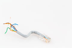 Ethernet Cable Royalty Free Stock Photo