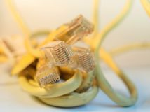 Ethernet cable isolated. Yellow ethernet cable connector isolated Stock Image