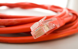 Ethernet Cable & Plug Royalty Free Stock Photos
