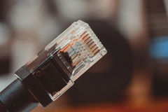 Ethernet cable Stock Photography