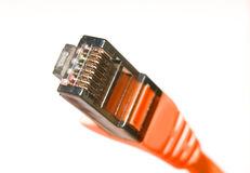 Ethernet cables Royalty Free Stock Photo
