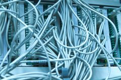 Ethernet cables Stock Image