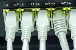 Ethernet cables Stock Photo