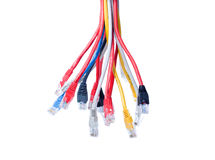 Ethernet cables isolated on white Royalty Free Stock Image