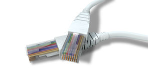 Ethernet Cables Unplugged Closeups Royalty Free Stock Image