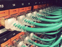 Ethernet Connection Royalty Free Stock Photography