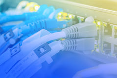 Ethernet copper cables Royalty Free Stock Images