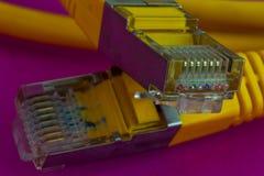 Ethernet czopuje zbliżenie fotografia stock