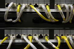 Ethernet patch panel. Yellow and white cables Royalty Free Stock Photo