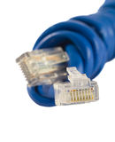 Ethernet plug Royalty Free Stock Photo