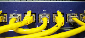 Ethernet RJ45 cables are connected to internet switch. On business server network Stock Photo