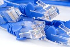 Ethernet-Seilzüge lizenzfreies stockbild