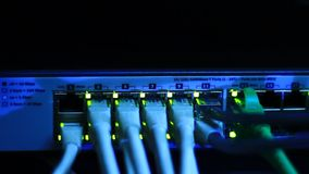 Ethernet switch with blinking LEDs. Blinking LED lights on working Ethernet switch. Details on cables and RJ45 in vivid colors stock footage