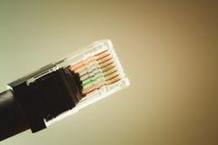 Etherneta kabel Zdjęcie Royalty Free