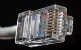 Etherneta kabel Obraz Royalty Free