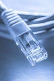 Etherneta kabel dla komputeru Fotografia Stock