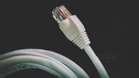 Etherneta kabel - RJ45 głowy włączniki Obraz Royalty Free