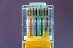Etherneta kablowy włącznik Fotografia Royalty Free