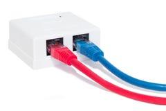 Ethernethålighet med blåa och röda kablar Arkivbilder