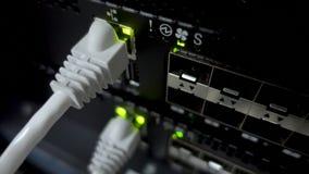 Ethernetinterfaces in netwerkcommutator Aanwijzing op de netwerkschakelaar Netwerk ethernet havens stock videobeelden