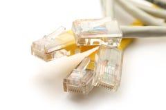 Ethernetkabel Royalty-vrije Stock Afbeelding