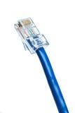 Ethernetkabel Royaltyfri Foto