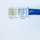 Ethernetkabel Royaltyfri Fotografi