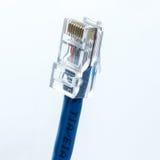 Ethernetkabel Royaltyfria Foton