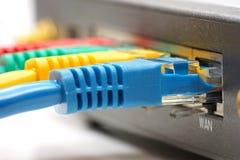 Ethernetkabel pluggade in i nätverksrouteren Arkivfoto