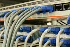 Ethernetkabels met de server die van computerinternet worden verbonden Royalty-vrije Stock Fotografie