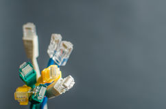 Ethernetkablar Royaltyfri Bild